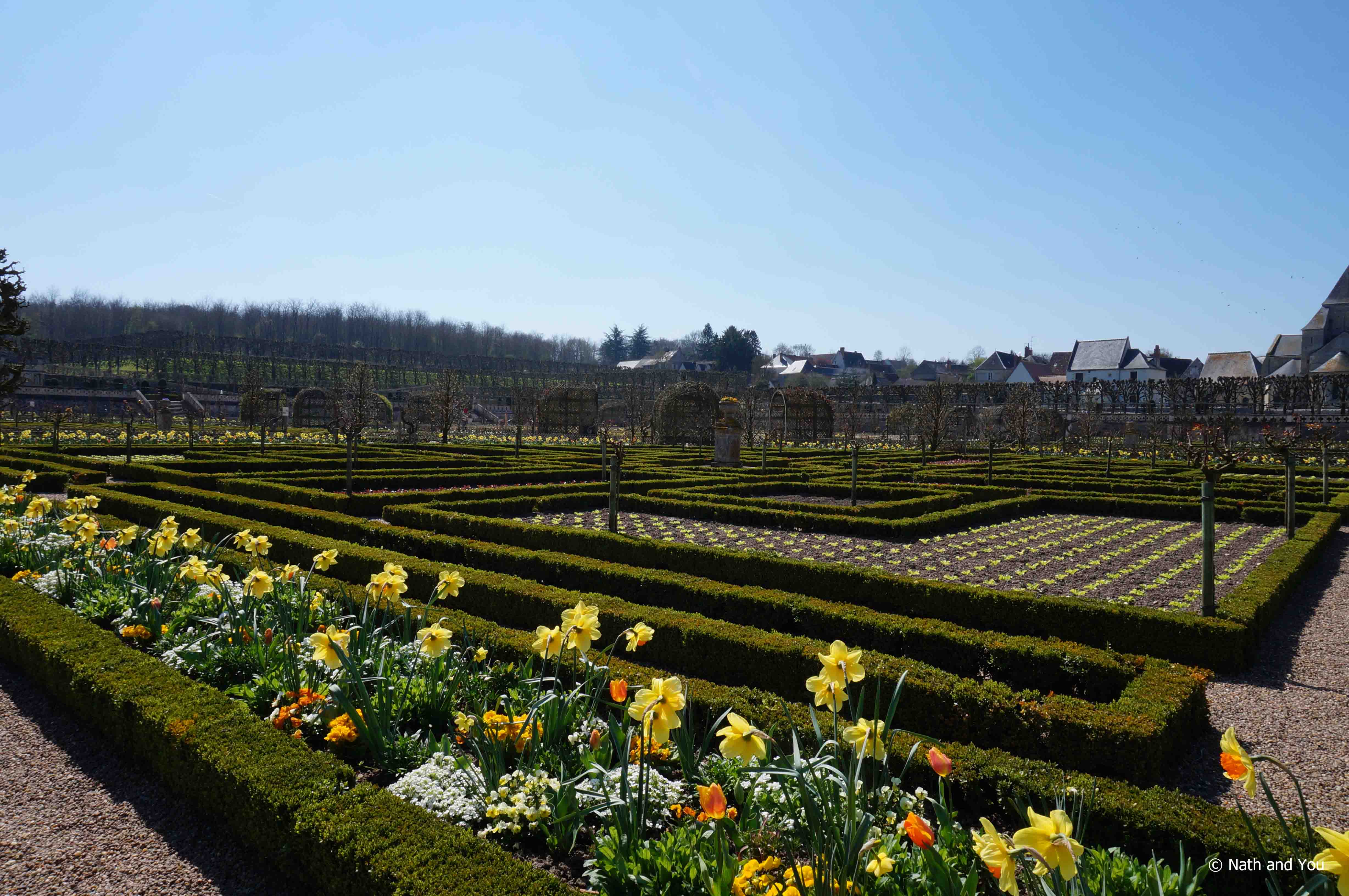 Villandry-3-Chateaux-Loire-Nath-and-you
