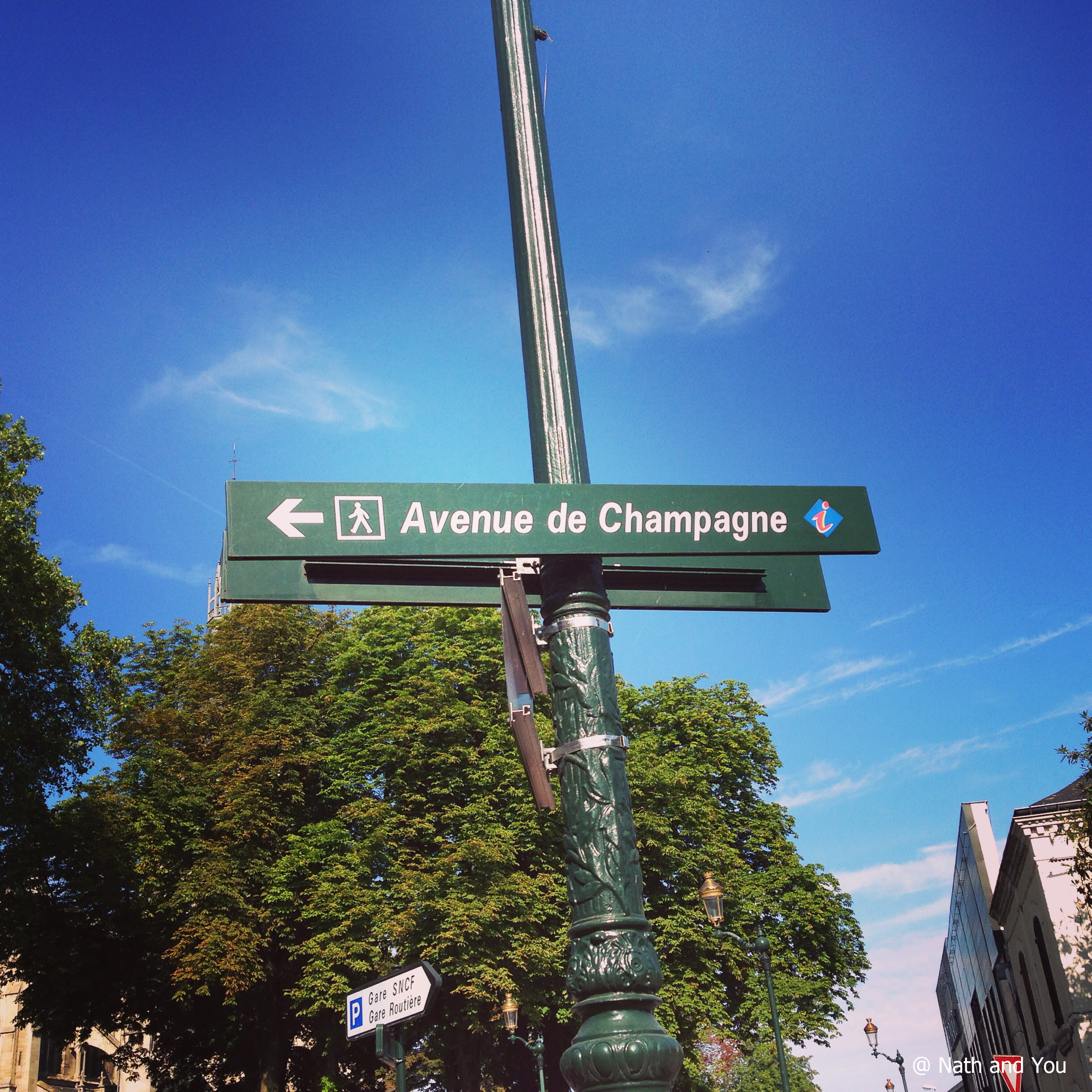 avenue-champagne-epernay-nath-and-you