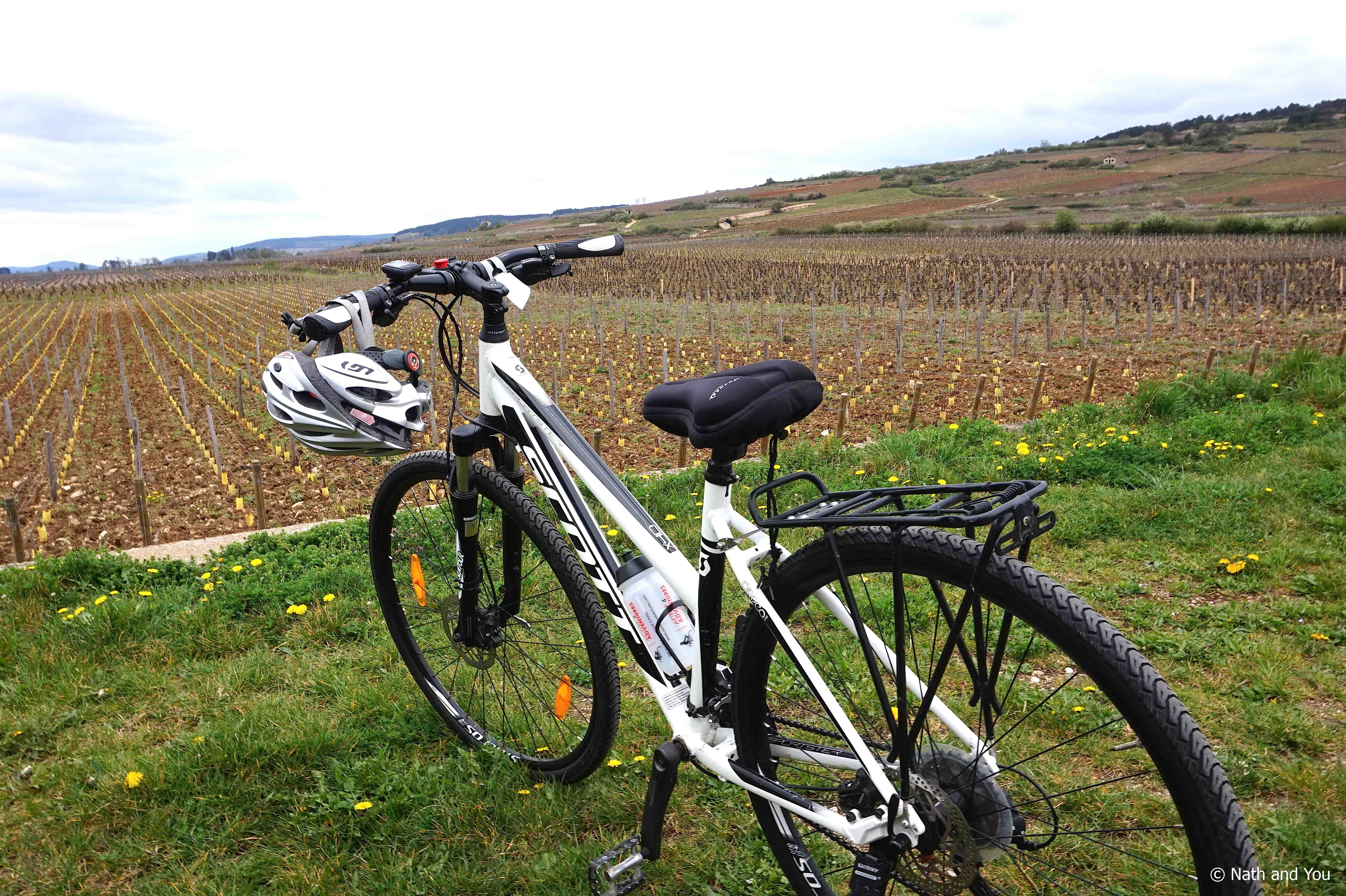 Week-end-Beaune-Balade-Velo-Vigne-Nath-and-you