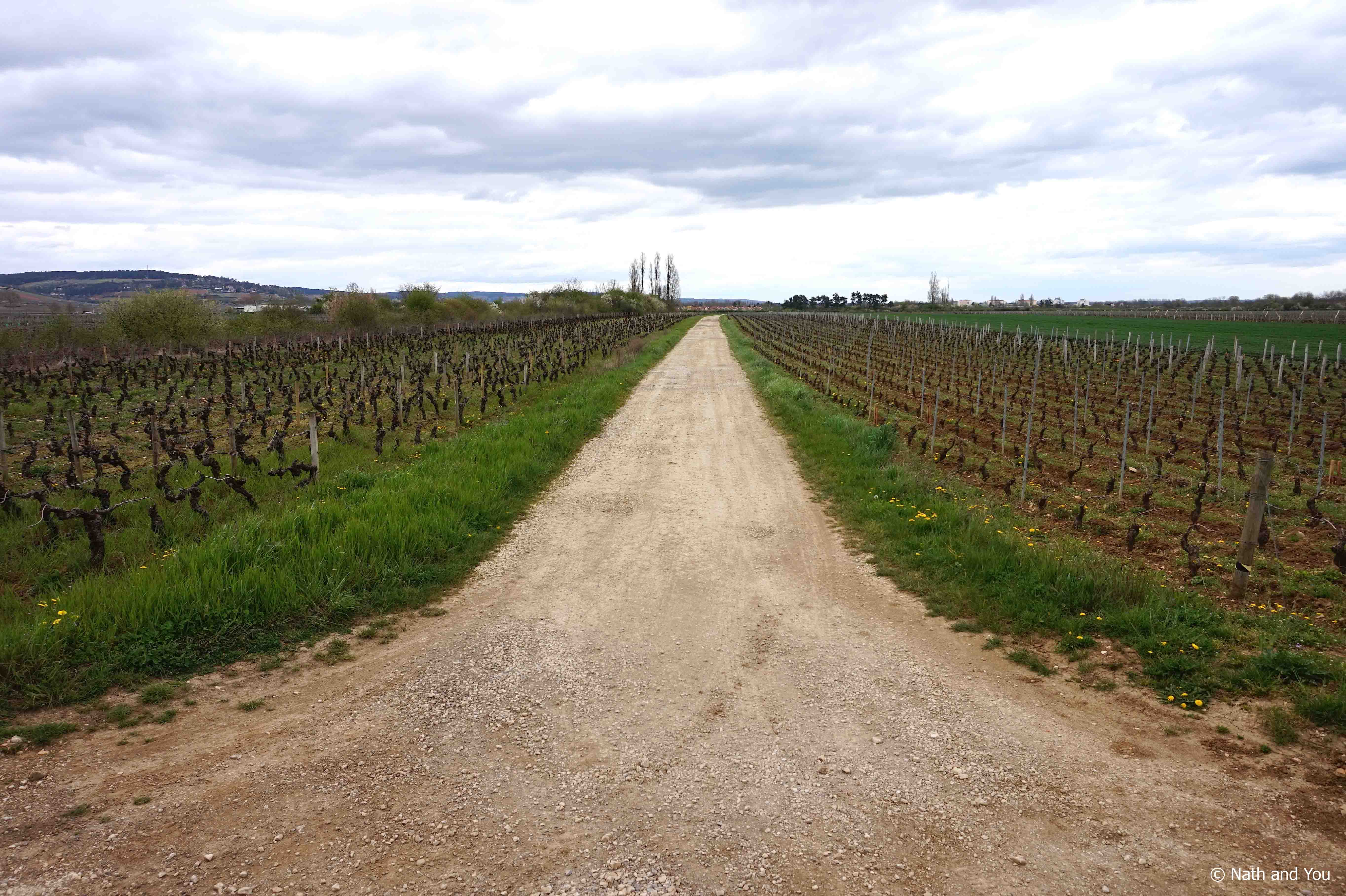Week-end-Beaune-Velo-Vignes-Nath-and-You