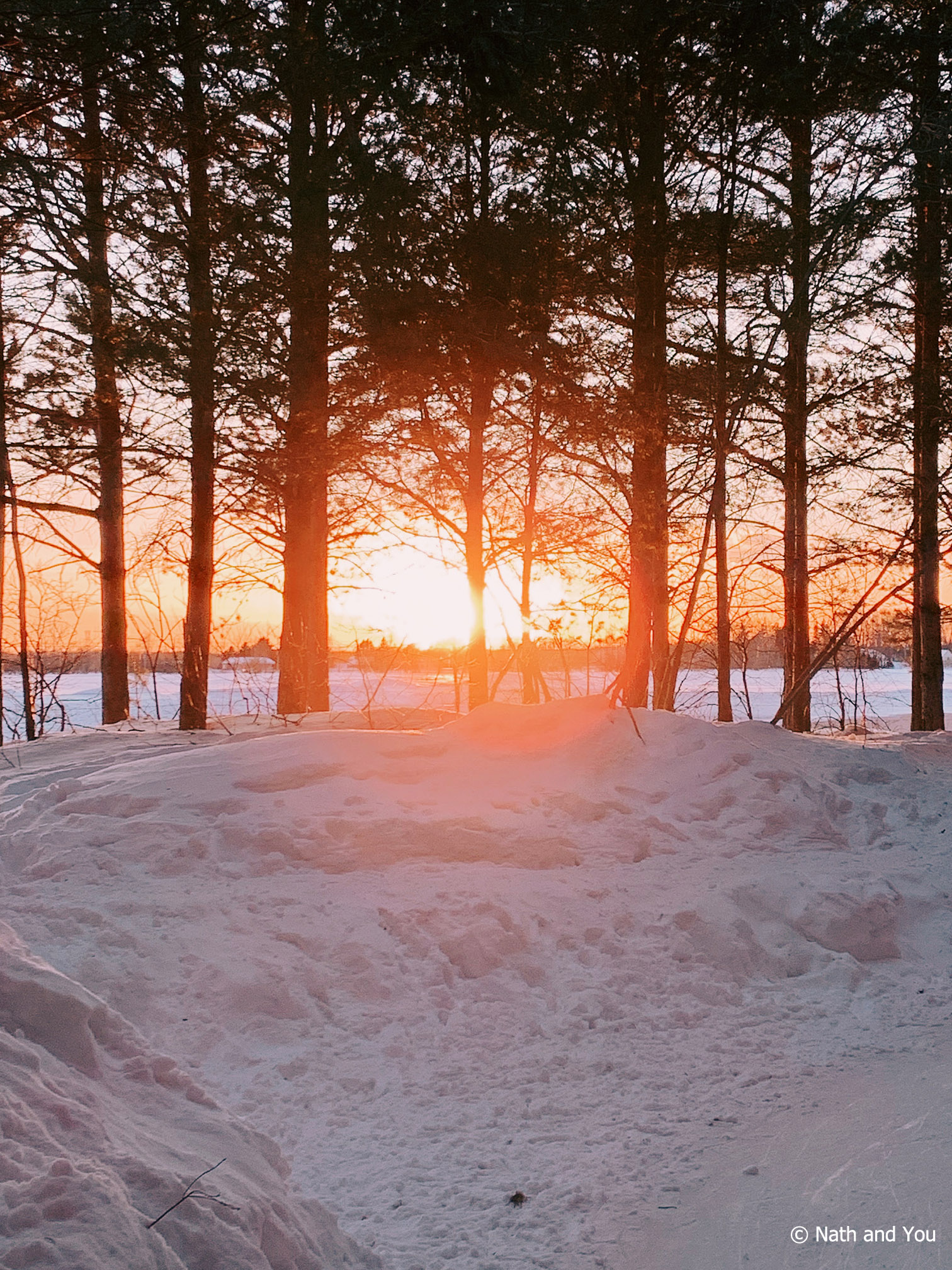 Coucher de soleil depuis le Domaine de la Forêt Perdue