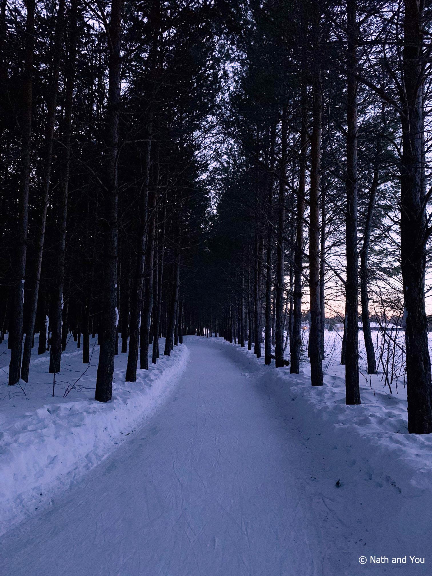 Traverser à la tombée de la Nuit le Domaine de la Forêt Perdue