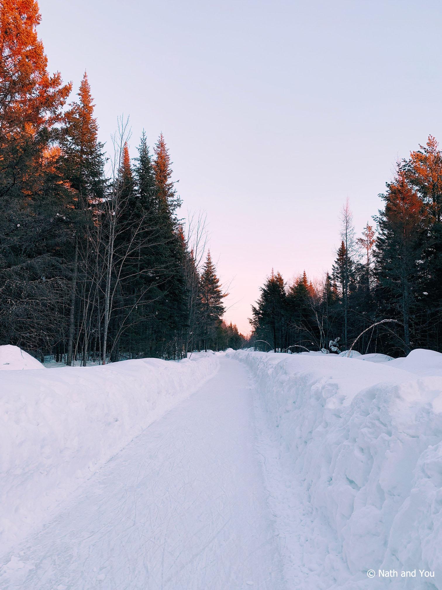 Sentiers glacés du Domaine de la Forêt Perdue